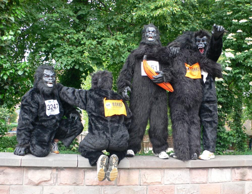 Affen haben spaß, Affen rennen
