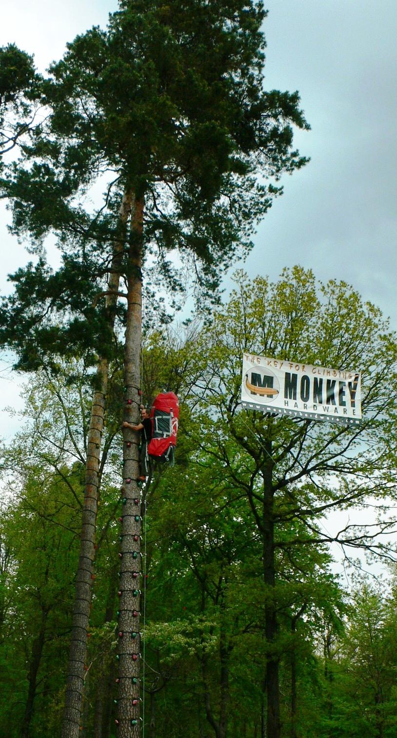 Baumklettern Wettbewerb, ab auf die Bäume