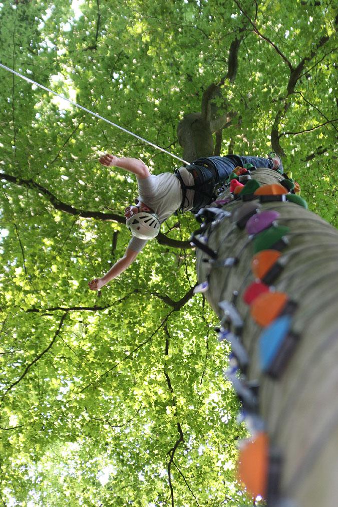 Andreas Erb beim Baumklettern