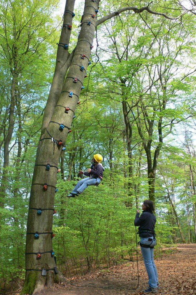 Kinder beim Baumklettern, Kind klettert auf einen Baum